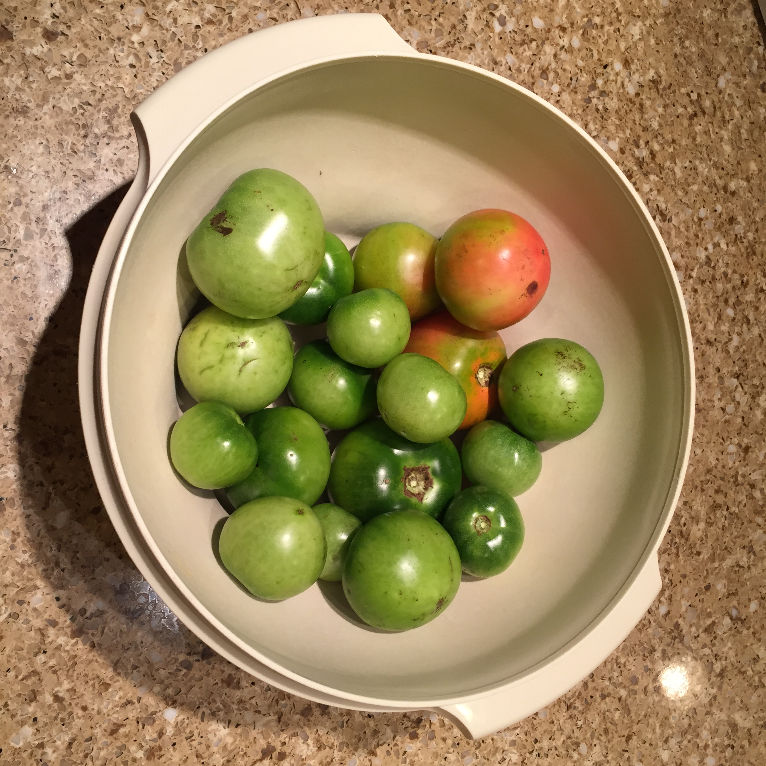 There were many green tomatoes left in the garden to find a good use for!